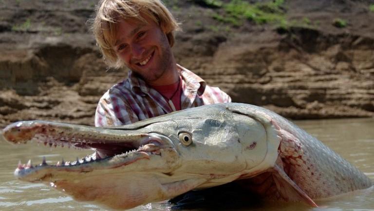 Аллигатор Гар - самая большая пресноводная рыба в мире