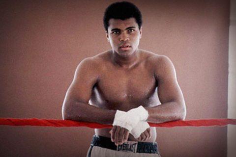 Топ 10 лучшие боксеры мира