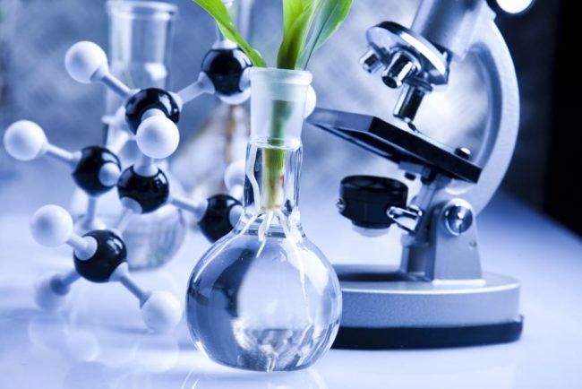 Специалист в генной инженерии и биотехнологии