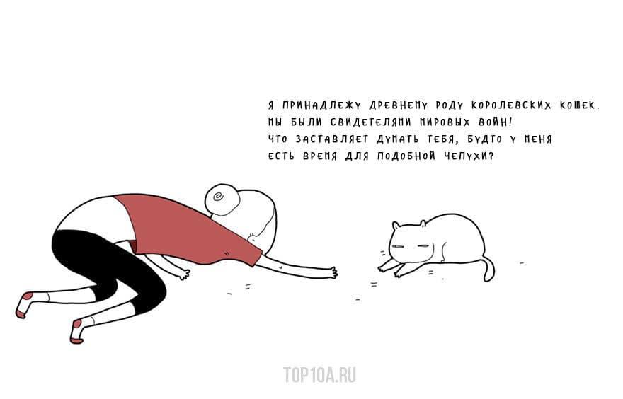 If-My-Cat-Could-Speak4__880