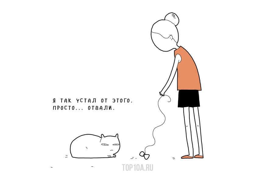 If-My-Cat-Could-Speak6__880