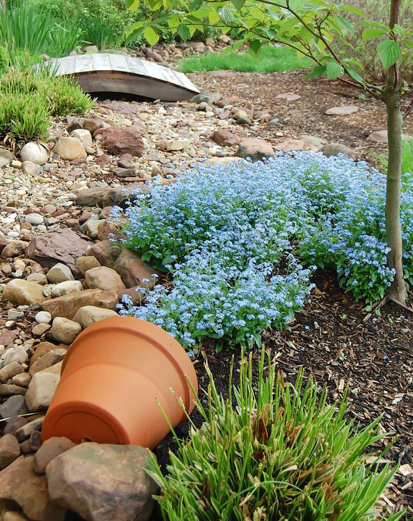 spilled-flowers-garden-ideas-14__880