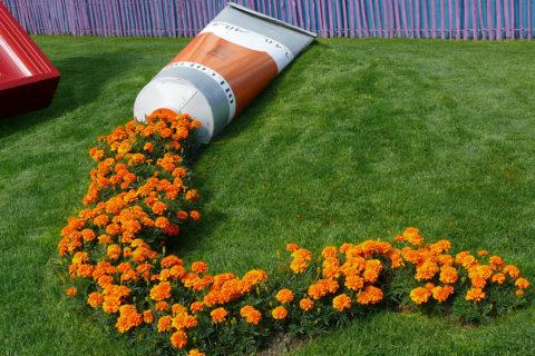 Яркие цветы, пролитые из цветочных горшков
