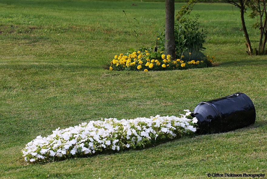 spilled-flowers-garden-ideas-8__880