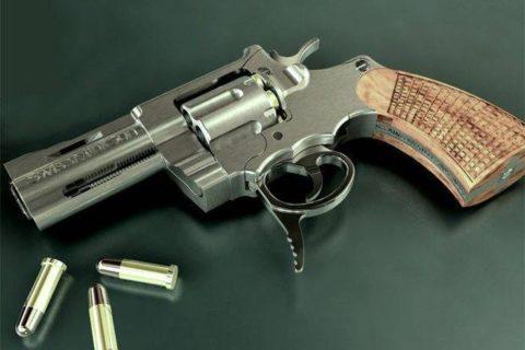 just-an-ordinary-gun-not-quite-3