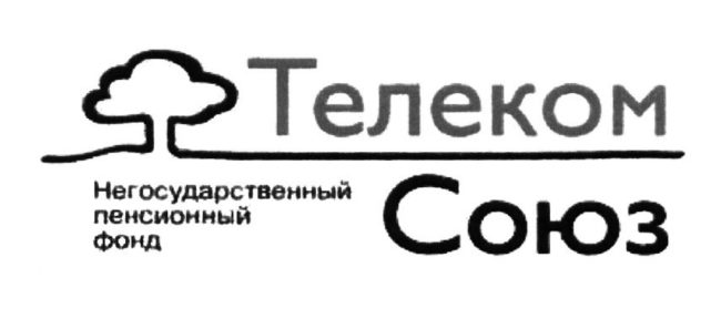 Телеком-Союз
