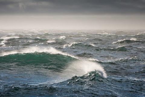 Топ 10 самые большие моря России по площади