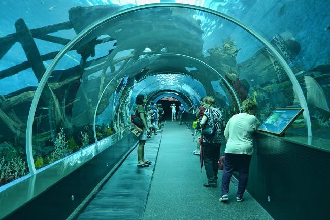 S.E.A.Aquarium