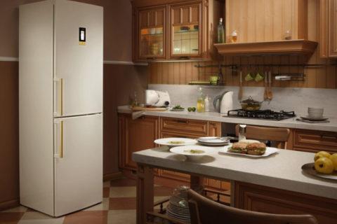 Лучшие холодильники «ноу фрост»