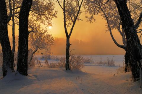 Самые холодные зимы в России за 100 лет