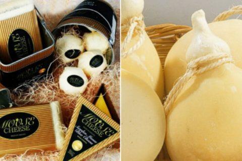 Топ-10 самых дорогих сыров
