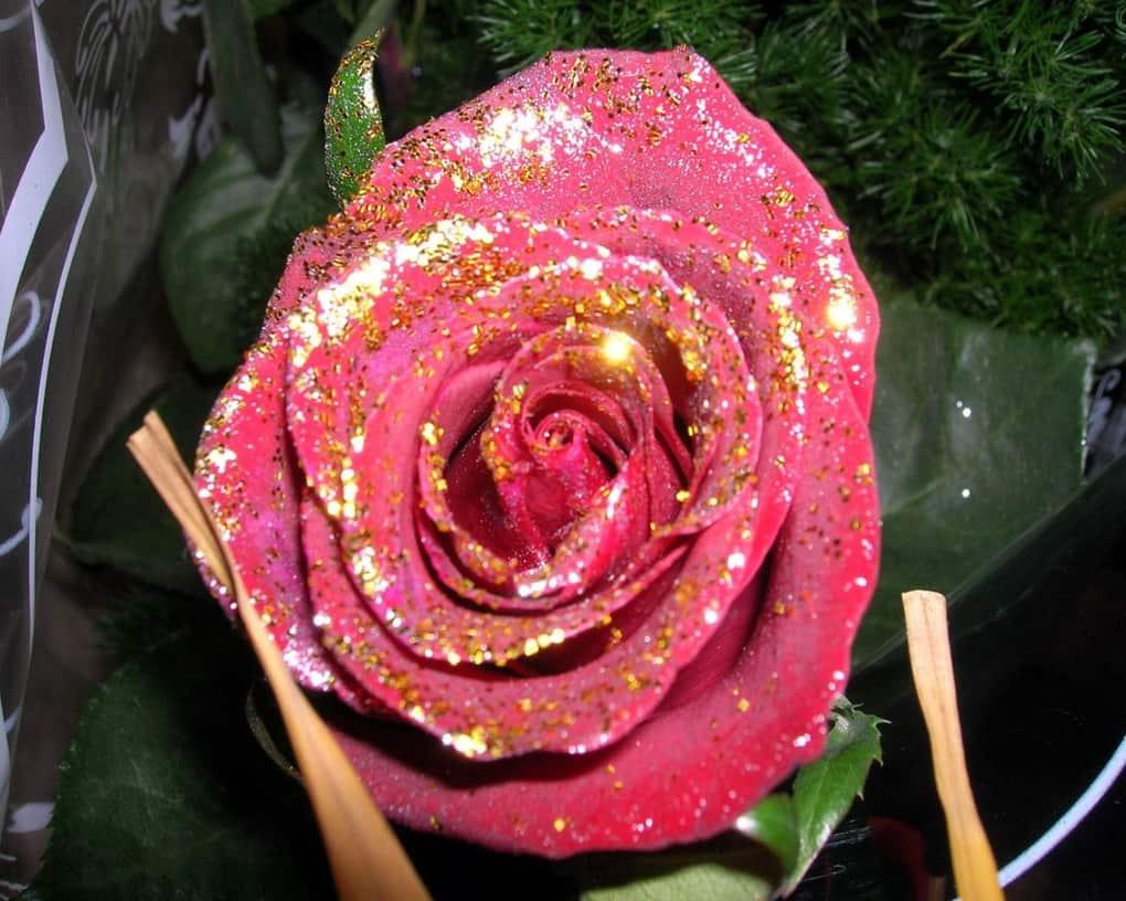 Картинки роза с блестками