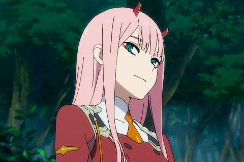 10 аниме, похожих на «Милый во франсе»
