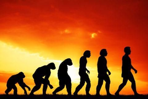 10 научных вопросов, ответ на которые должен знать каждый