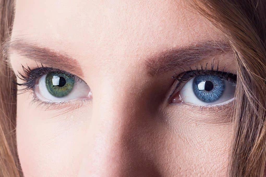 видов глаза разных цветов и форм фото город древний, потому