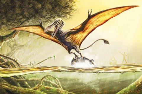 10 загадочных объектов и существ, за которыми охотились исследователи в Африке